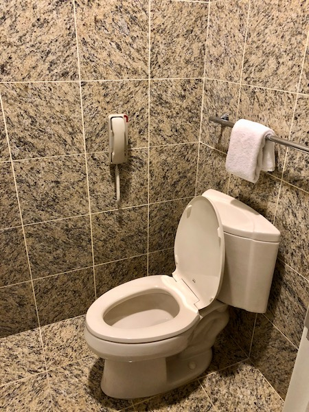 Guest bathroom toilet