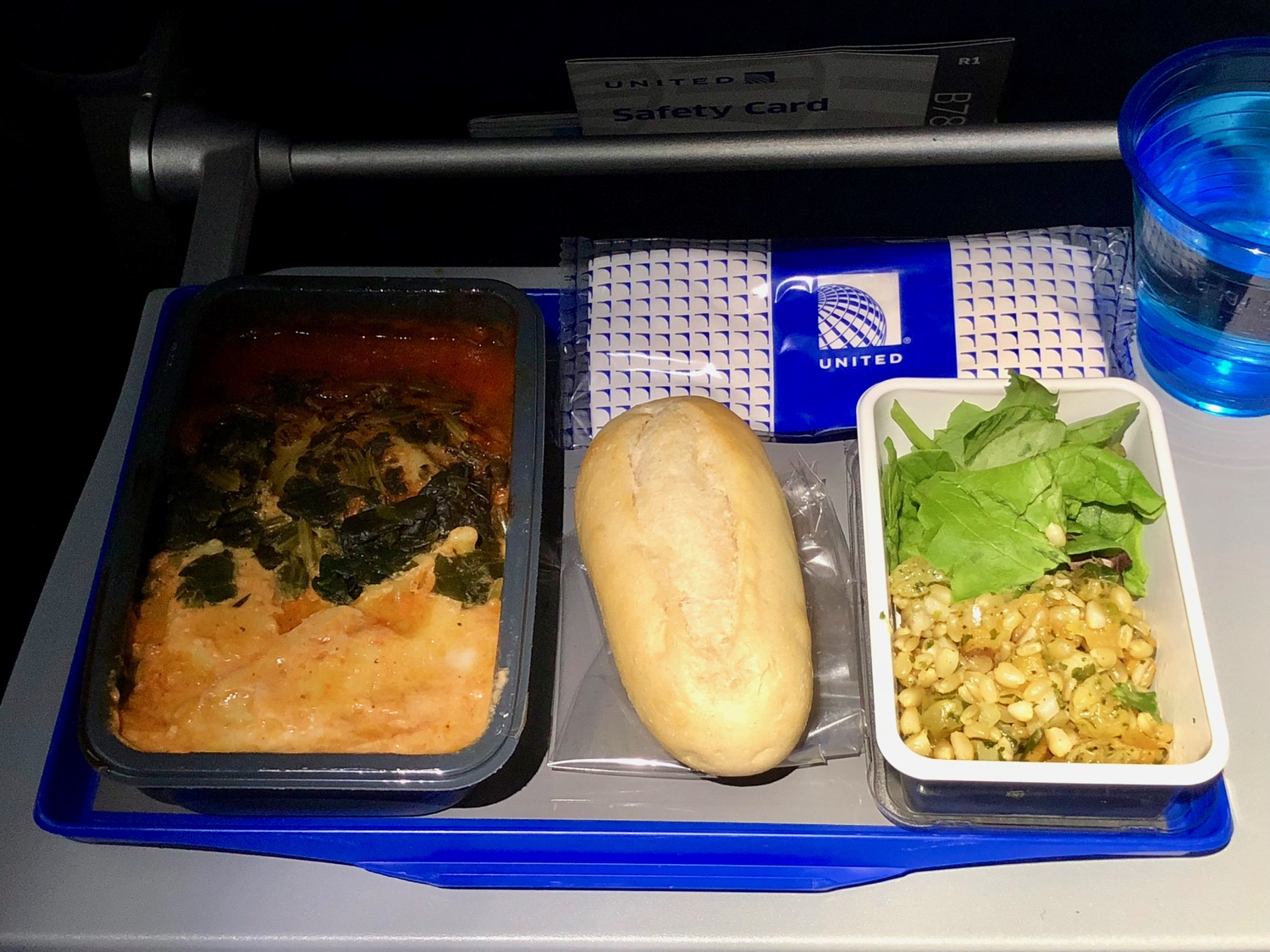 What's A Longhaul Economy Class Meal Like On United Airlines? - Live