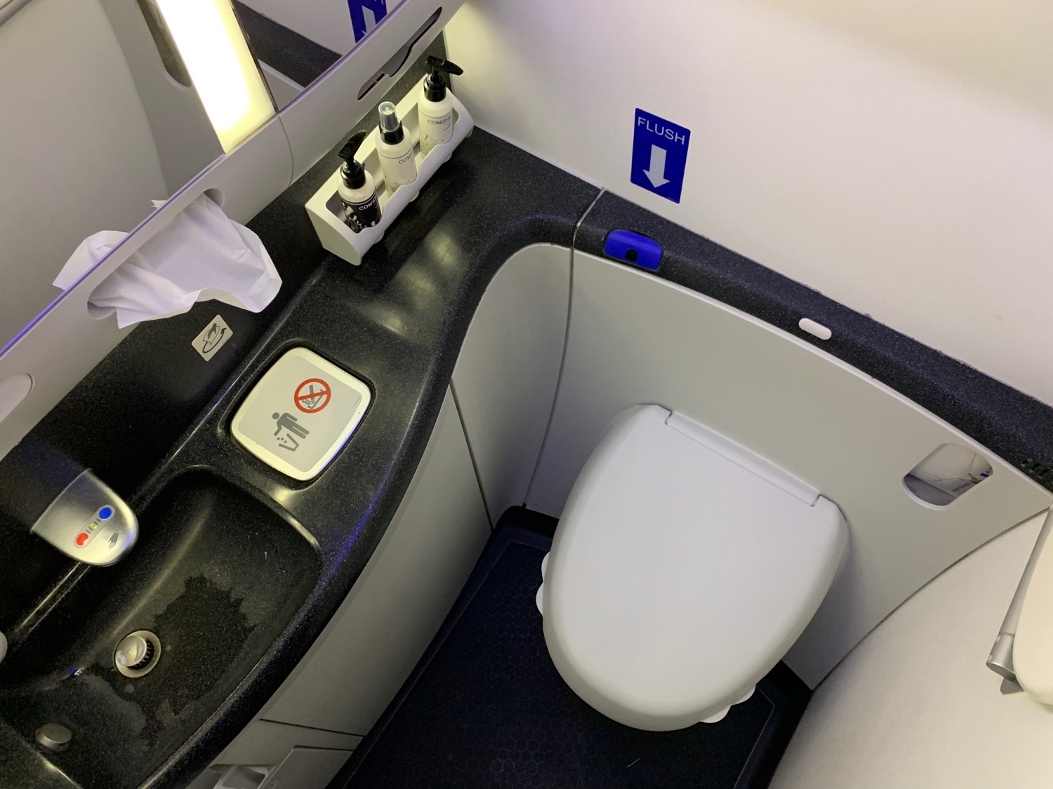 Review: United Airlines 787-9 Business Class Los Angeles To