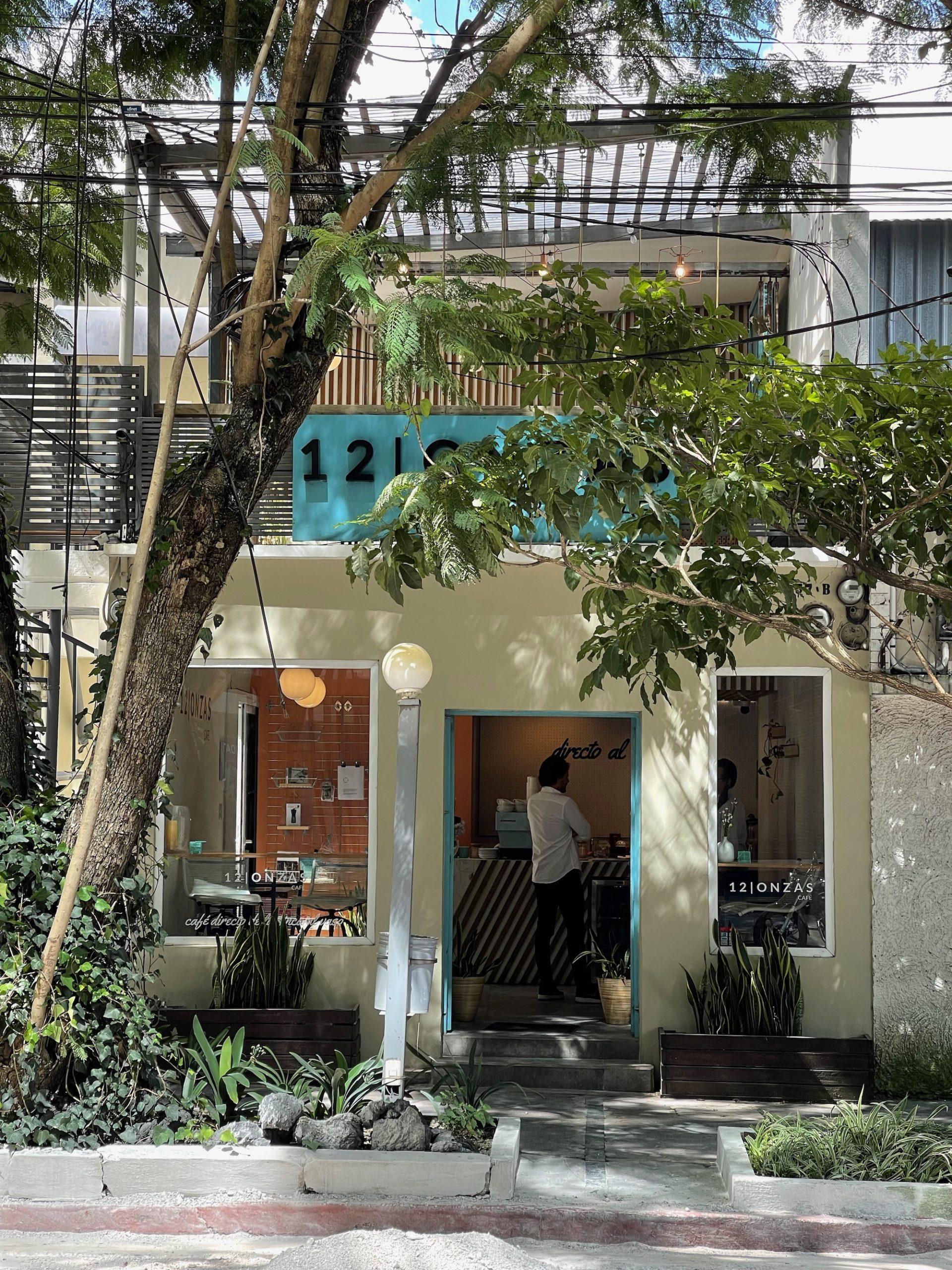 Best Coffee Guatemala City